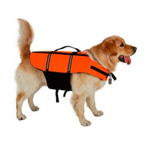 Gelbėjimosi liemenė šunims