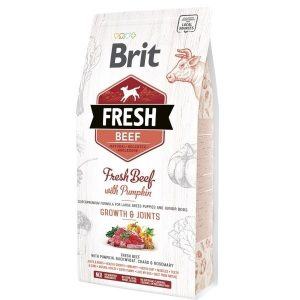 Brit Fresh Beef Pumpkin Puppy Large