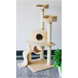 Įspūdingas kačių namas