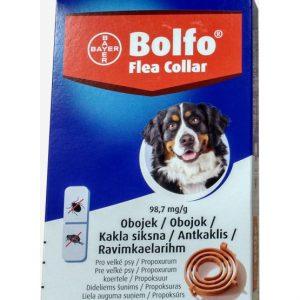 Bolfo antkaklis nuo parazitų vidutinių ir didelių veislių šunims